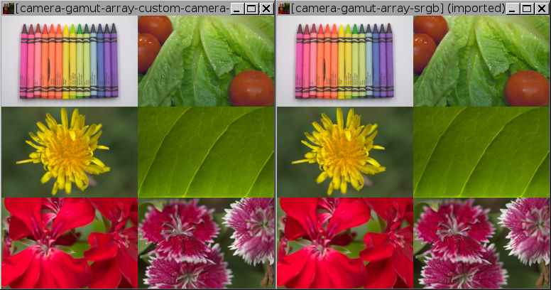 Sample images: crayons, lettuce and tomatos, dandelion, green leaf, red flowers, magenta flowers