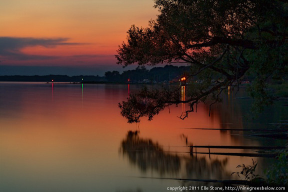 Pine branch over Onondaga Lake at twilight